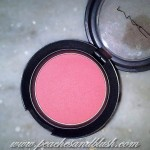 MAC Fleur Power Blush: Swatches, Review, Photos