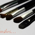 My Makeup Brushes: The Soft, The Furry & The Gentle !!!