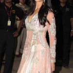 FilmFare Awards 2011 Red Carpet : Who Wore What