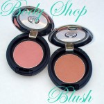 Body Shop Powder Blush in 02 & 05 , Review , Swatches : For Light Summery Cheeks