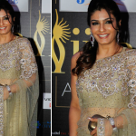 Priyanka Chopra at the Marrakech Film Festival !