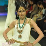 India International Jewellery Week 2012 : Photos