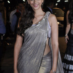 Filmfare Awards Red Carpet 2013: Who Wore What