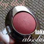 Lakme Earth Rose Trio Blush   Swatches & More