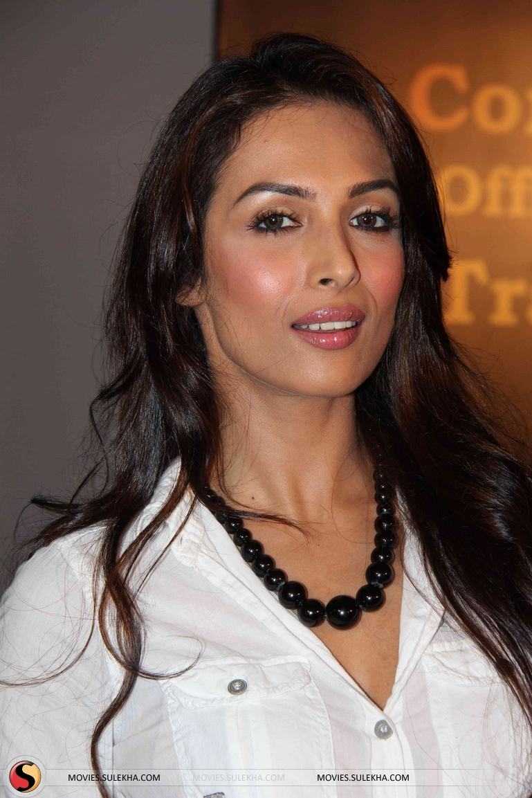blush-malaika-arora-oval-face