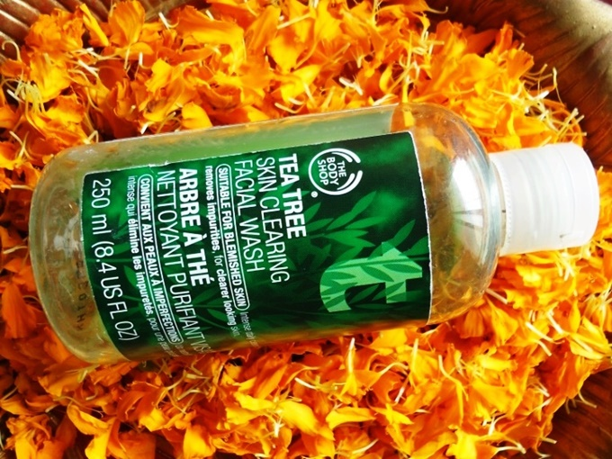 The Body Shop Tea Tree Facial Wash Review (3)