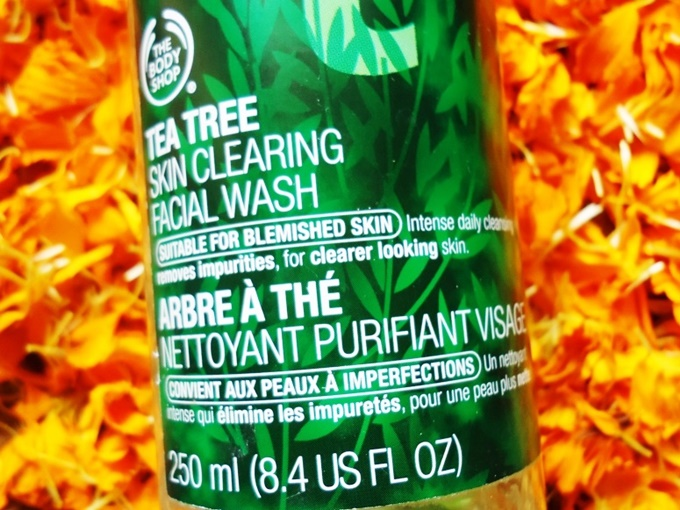 The Body Shop Tea Tree Facial Wash Review (4)