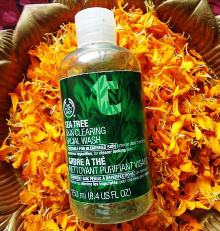The Body Shop Tea Tree Facial Wash Review (5)