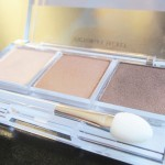 Victoria's Secret Ultimate Look Shadow Trio Review: Most Wanted