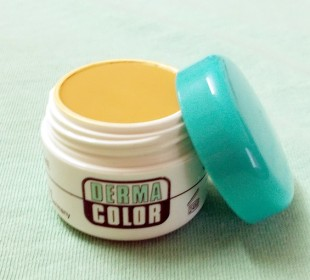Kryolan Derma Color Camouflage Creme in D64 Review