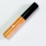 Lakme Absolute Face Stylist Concealer In Honey Review